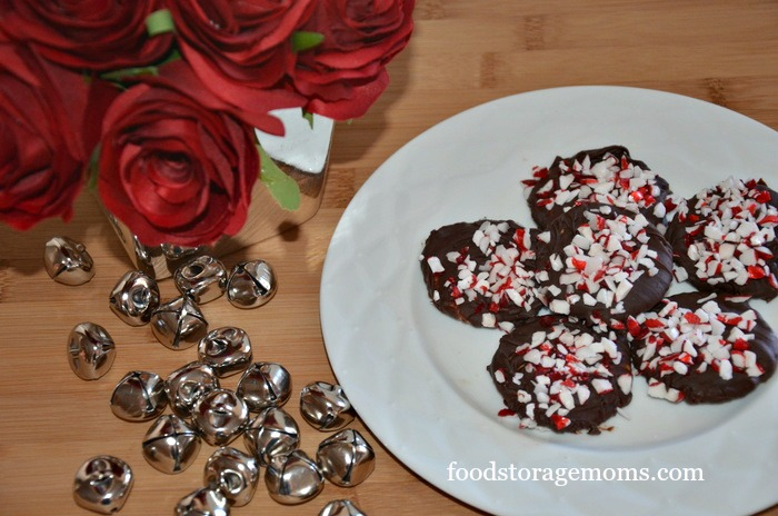 How To Make Chocolate Mint Cookies Or Crackers by FoodStorageMoms.com