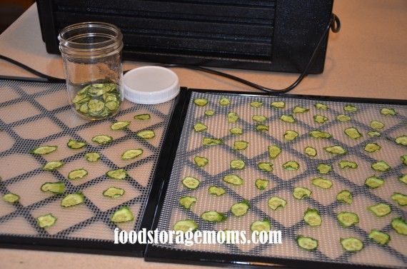 How to Dehydrate Cucumbers | by FoodStorageMoms.com
