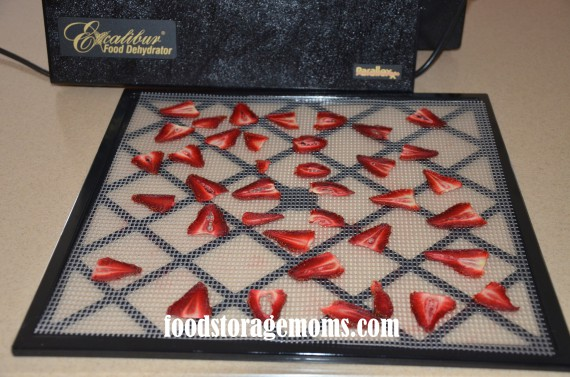 fruit slicer dehydrated fruit healthy