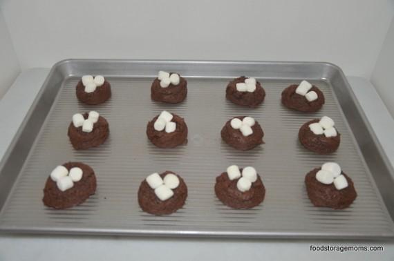 Best chocolate marshmallow cookies