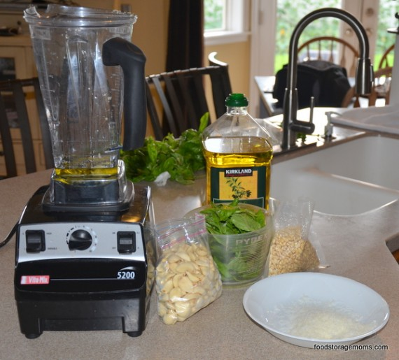 Garlic-parmesan-pinenut-pesto