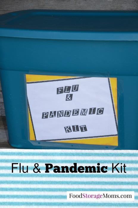 30 Pandemic Essentials Everyone Needs Today | via www.foodstoragemoms.com