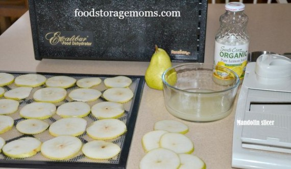 Pears-Easy Healthy Snack For Everyone | by FoodStorageMoms.com