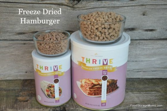 What Does Freeze Dried Meat Look Like | by FoodStorageMoms.com